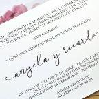 Invitación de boda mariposa y flores Cardnovel 39611 texto