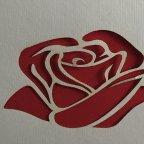 Invitación de boda rosa en láser, 1804F
