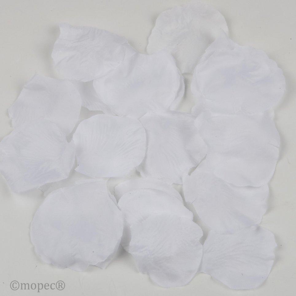 Weiße Rosenblätter