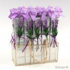 Espositore 30 casse 6 napolitane fiori di lavanda *
